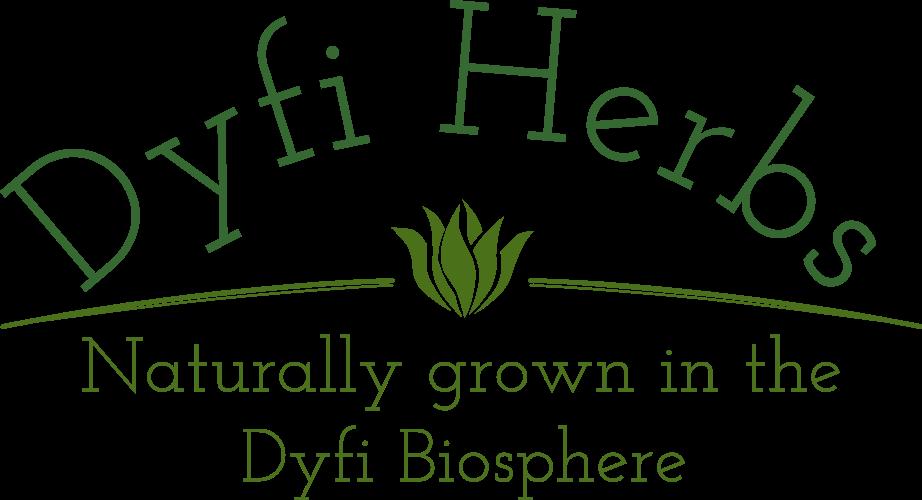 Dyfi Herbs